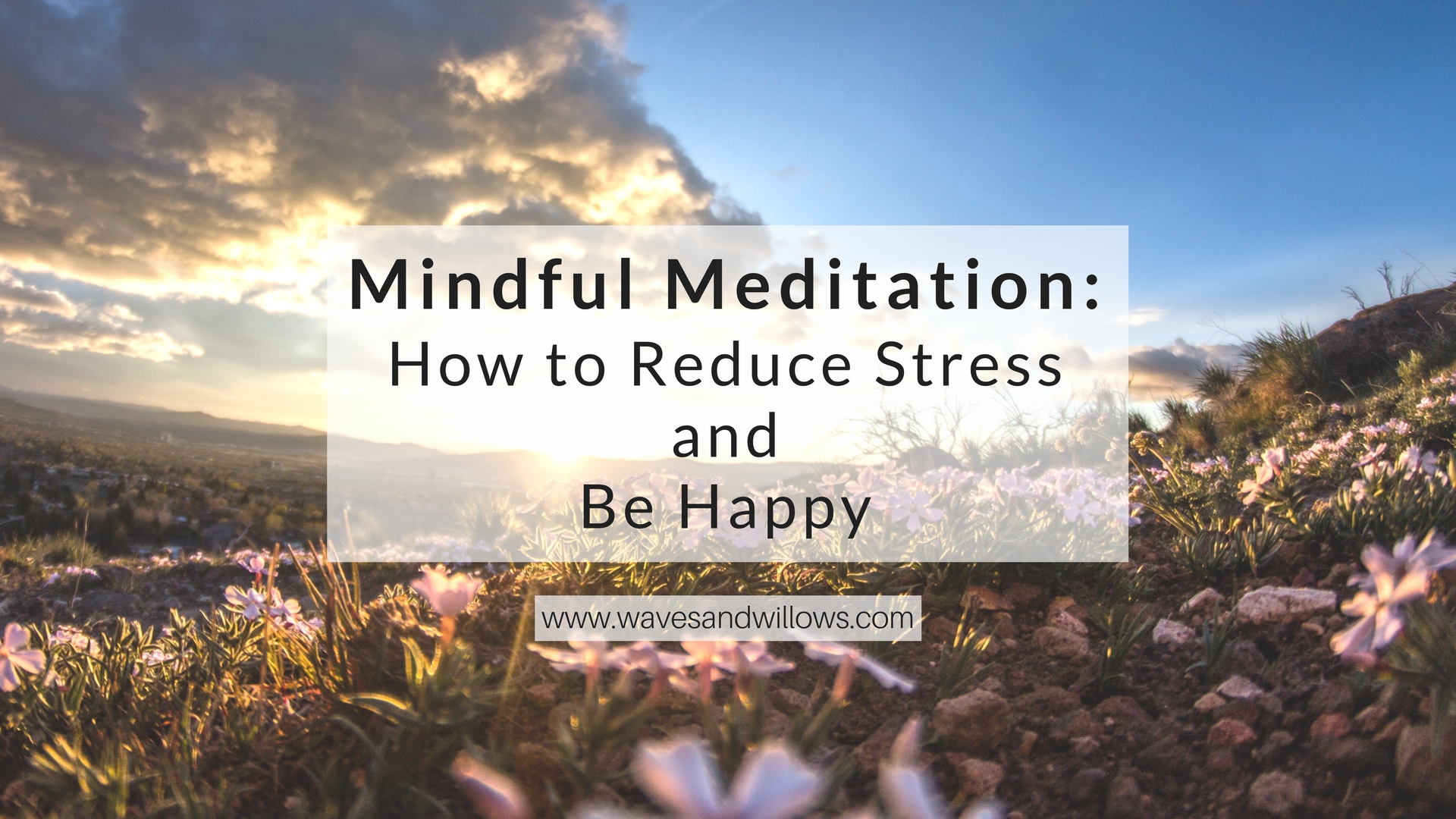 Learn about mindful meditation and how it can reduce stress and improve your life. www.wavesandwillows.com